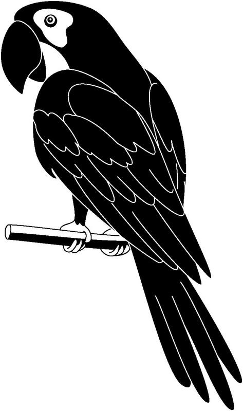 Наклейка «Попугай»
