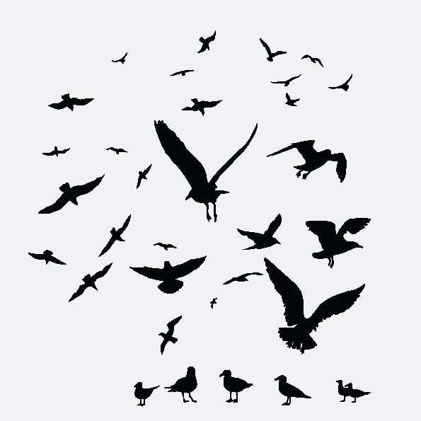 Наклейка «Домашние и дикие птицы»Животные и птицы<br><br>