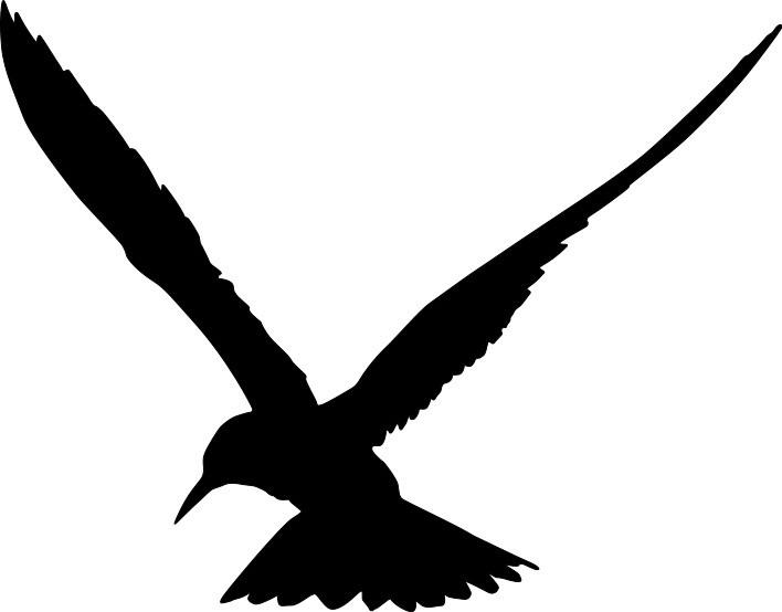 Наклейка «Чайка»
