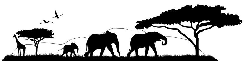 Наклейка «Африканские животные»