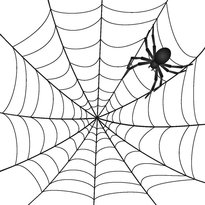 Наклейка «Паук на паутине»Насекомые<br><br>