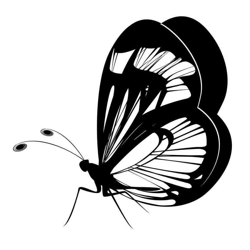 Наклейка «Бабочка»Насекомые<br><br>