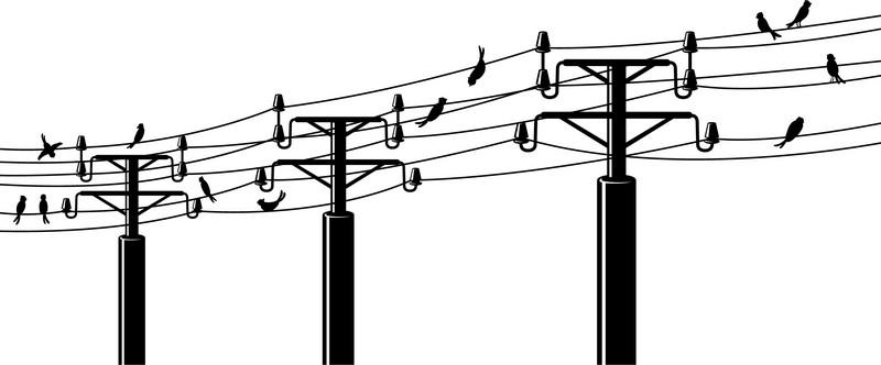 Наклейка «Птицы на проводах»Разное<br><br>