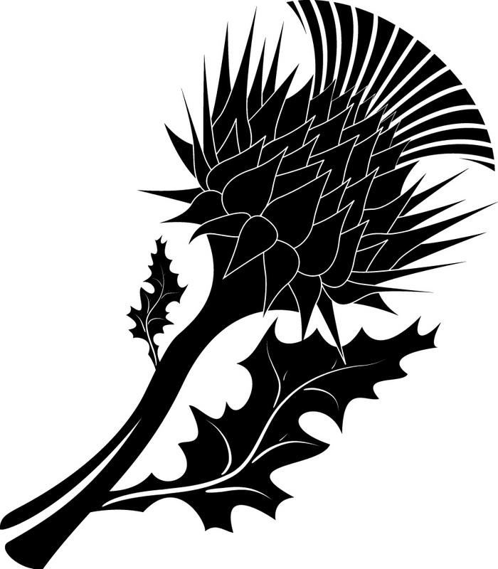 Наклейка «Колючий цветок»Цветы<br><br>