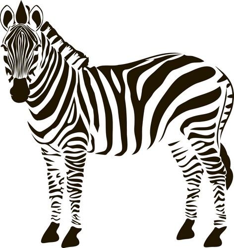 Наклейка «Зебра»
