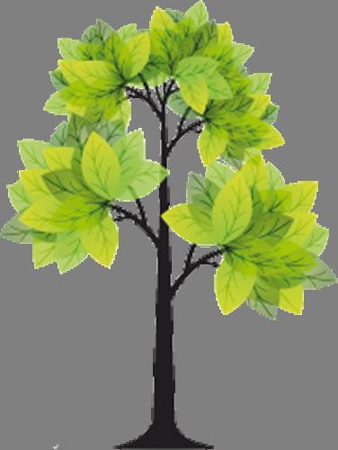 Наклейка «Стройное дерево»