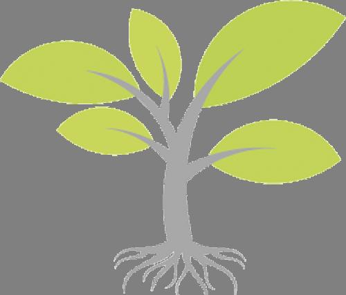Наклейка «Салатовые листья»Деревья<br><br>