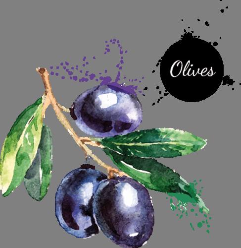 Наклейка «Оливки»Для кухни, столовой<br><br>