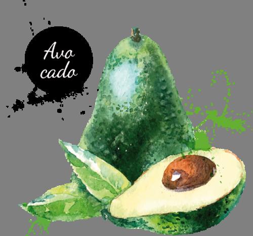 Наклейка «Авокадо»Для кухни, столовой<br><br>