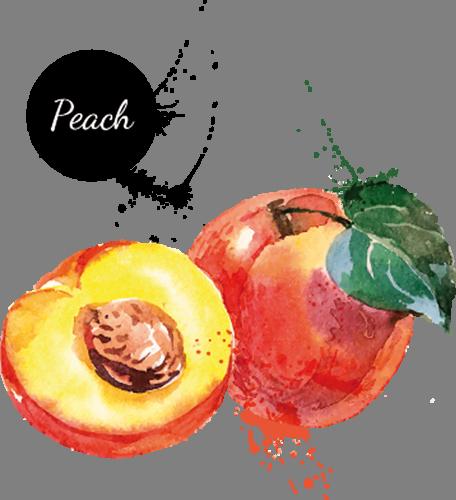 Наклейка «Персик»Для кухни, столовой<br><br>