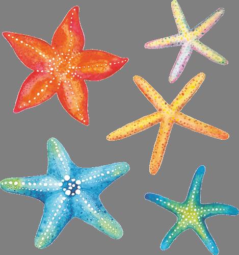 Наклейка «Морские звёзды»Для ванны, туалета<br><br>