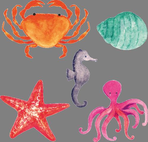 Наклейка «Пять морских обитателей»
