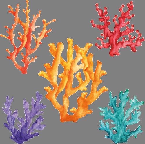 Наклейка «Цветные водоросли»Для ванны, туалета<br><br>