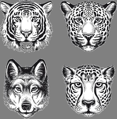 Наклейка «Головы хищников»Животные и птицы<br><br>