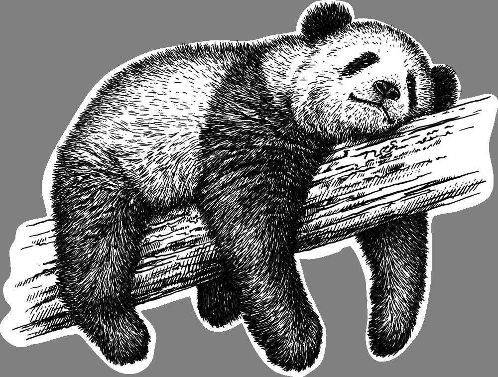 Наклейка «Спящая панда»Животные и птицы<br>Цветная интерьерная наклейка на виниле. Яркая и красивая! Можно сделать любой размер. Трехслойная надежная упаковка. Доставим в любую точку России.<br>