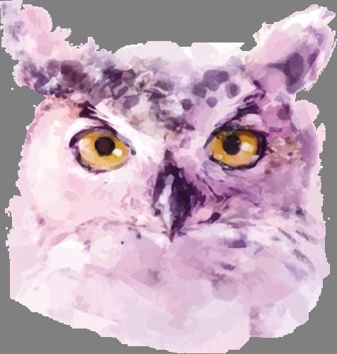 Наклейка «Голова совы»Животные и птицы<br><br>