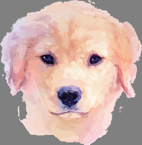 Наклейка «Голова собаки»