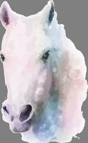 Наклейка «Белая лошадь»Животные и птицы<br><br>