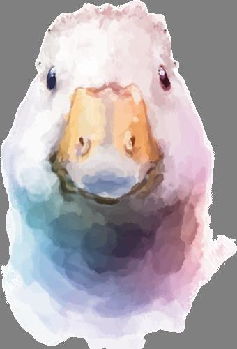 Наклейка «Голова гуся»Животные и птицы<br><br>