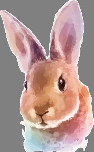 Наклейка «Голова зайца»Животные и птицы<br>Цветная интерьерная наклейка на виниле. Яркая и красивая! Можно сделать любой размер. Трехслойная надежная упаковка. Доставим в любую точку России.<br>