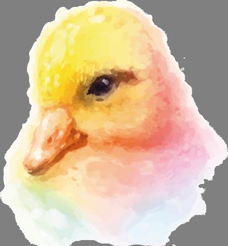 Наклейка «Голова утёнка»Животные и птицы<br><br>