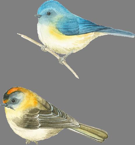 Наклейка «Две птички»Животные и птицы<br>Цветная интерьерная наклейка на виниле. Яркая и красивая! Можно сделать любой размер. Трехслойная надежная упаковка. Доставим в любую точку России.<br>