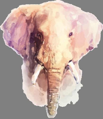 Наклейка «Голова слона»Животные и птицы<br><br>