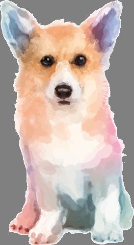 Наклейка «Рыжий пёс»Животные и птицы<br>Цветная интерьерная наклейка на виниле. Яркая и красивая! Можно сделать любой размер. Трехслойная надежная упаковка. Доставим в любую точку России.<br>