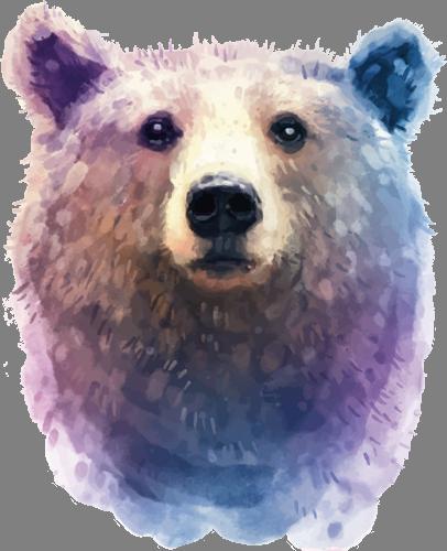 Наклейка «Морда медведя»Животные и птицы<br><br>