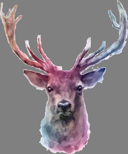 Наклейка «Голова оленя»Животные и птицы<br><br>