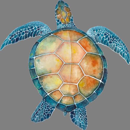 Наклейка «Голубая черепаха»Животные и птицы<br><br>