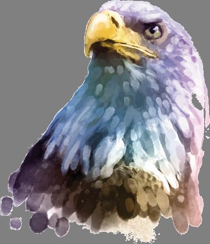 Наклейка «Голова орла»Животные и птицы<br><br>