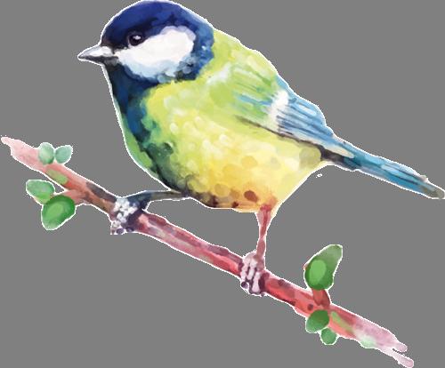Наклейка «Птичка на ветке»Животные и птицы<br><br>