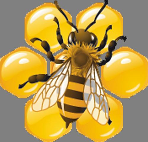 Наклейка «Пчела и мёд»Насекомые<br><br>