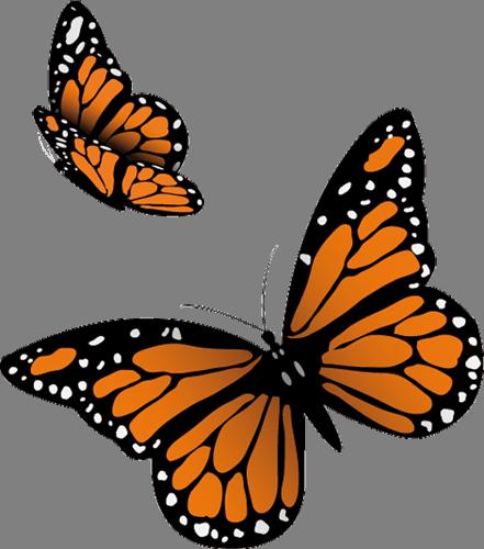 Наклейка «Пара бабочек»Насекомые<br><br>