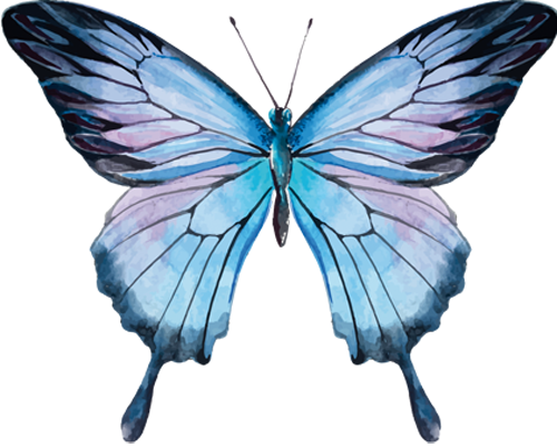 Наклейка «Голубая бабочка»Насекомые<br>Цветная интерьерная наклейка на виниле. Яркая и красивая! Можно сделать любой размер. Трехслойная надежная упаковка. Доставим в любую точку России.<br>