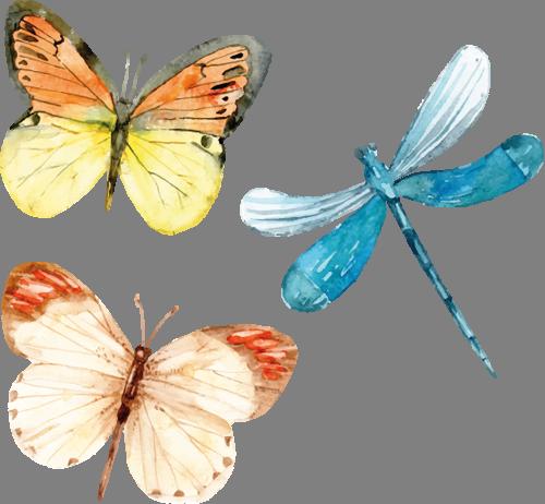 Наклейка «Стрекоза и бабочки»Насекомые<br><br>