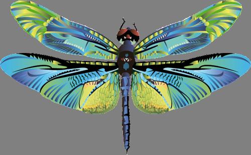 Наклейка «Разноцветная стрекоза»Насекомые<br><br>