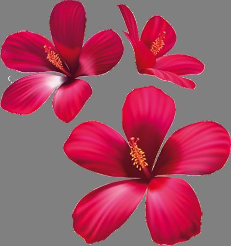 Наклейка «Три красных цветка» от Artwall