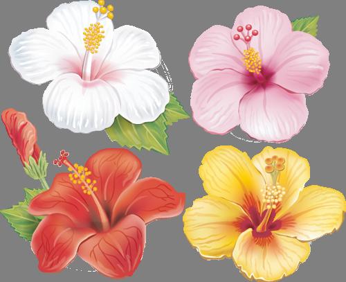 Наклейка «Четыре цветка»Цветы<br>Цветная интерьерная наклейка на виниле. Яркая и красивая! Можно сделать любой размер. Трехслойная надежная упаковка. Доставим в любую точку России.<br>