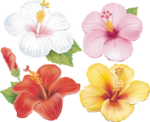 Наклейка «Четыре цветка»Цветы<br><br>