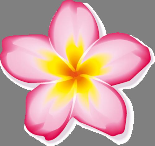 Наклейка «Пять розовых лепестков» от Artwall