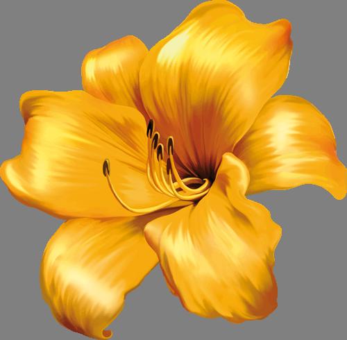 Наклейка «Жёлтые лепестки»Цветы<br><br>