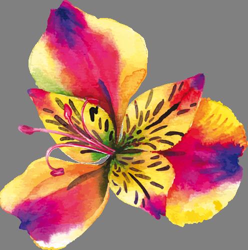 Наклейка «Яркие оттенки»Цветы<br><br>