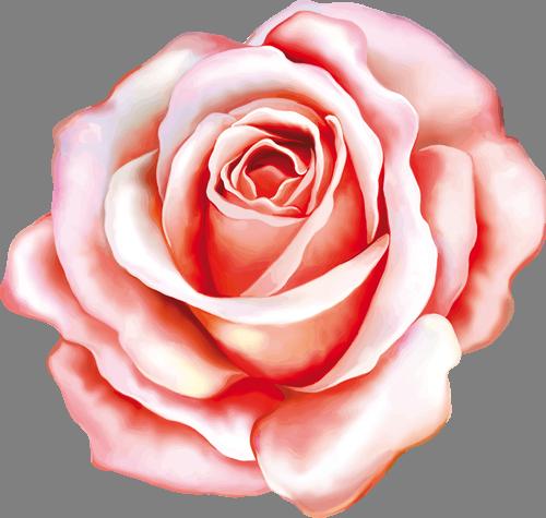 Наклейка «Алая роза»Цветы<br>Цветная интерьерная наклейка на виниле. Яркая и красивая! Можно сделать любой размер. Трехслойная надежная упаковка. Доставим в любую точку России.<br>