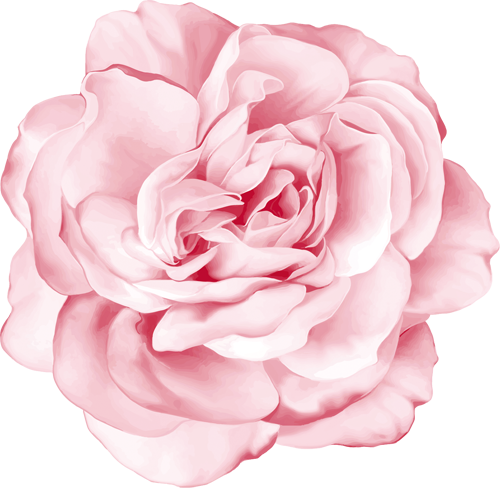 Наклейка «Нежно-розовая роза»Цветы<br>Цветная интерьерная наклейка на виниле. Яркая и красивая! Можно сделать любой размер. Трехслойная надежная упаковка. Доставим в любую точку России.<br>