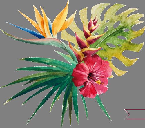 Наклейка «Тропики»Цветы<br><br>