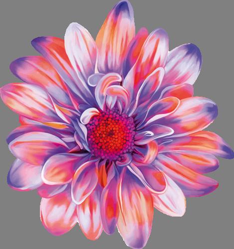 Наклейка «Волшебный цветок»Цветы<br>Цветная интерьерная наклейка на виниле. Яркая и красивая! Можно сделать любой размер. Трехслойная надежная упаковка. Доставим в любую точку России.<br>
