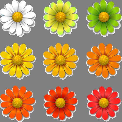Наклейка «Палитра ромашек»Цветы<br><br>