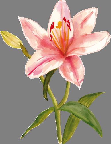 Наклейка «Цветок на стебельке»Цветы<br><br>